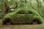 carro_ecologico
